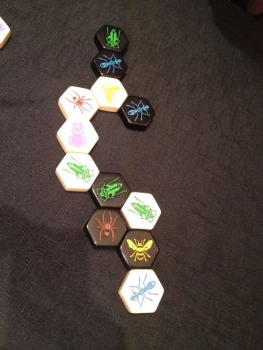 Hive Game Play