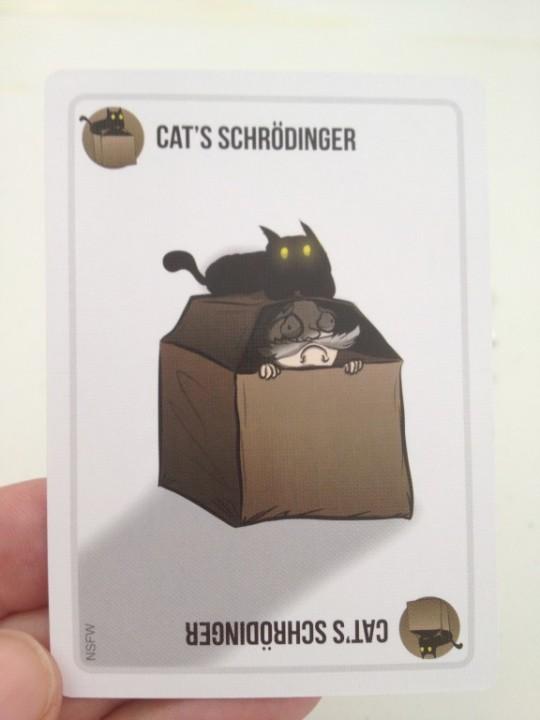 Exploding Kittens Cats Schrodinger