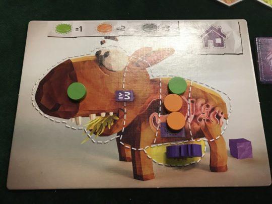 wombat-rescue-wombat-board